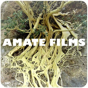 Profile picture for Amate Films