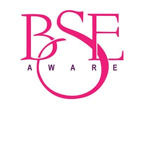 Profile picture for BSE Aware