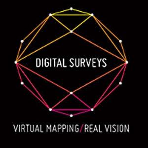 Profile picture for Digital Surveys