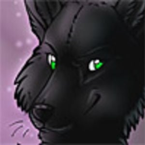 Profile picture for JariWolf