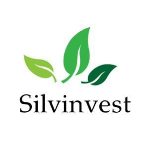 Profile picture for silvinvest
