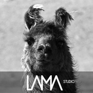 Profile picture for LAMA