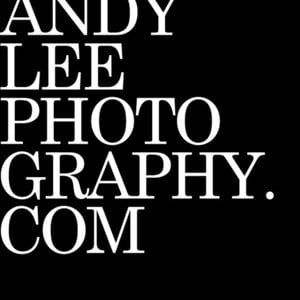 Profile picture for Andy Lee