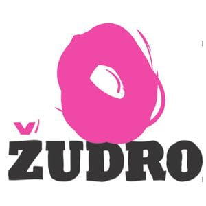 Profile picture for Žudro