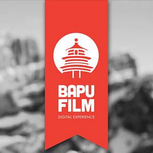 Profile picture for Bapufilm
