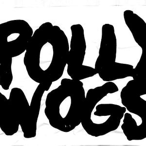 Profile picture for The Pollywogs