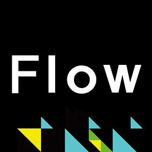 Profile picture for Flow Visuals