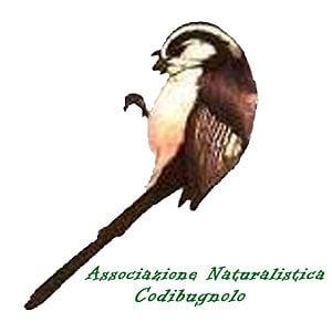 Profile picture for Associazione Codibugnolo