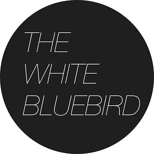 Profile picture for The White Bluebird