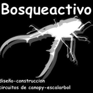 Profile picture for bosqueactivo