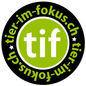 Profile picture for tier-im-fokus.ch