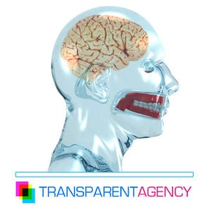 Profile picture for Transparent Agency