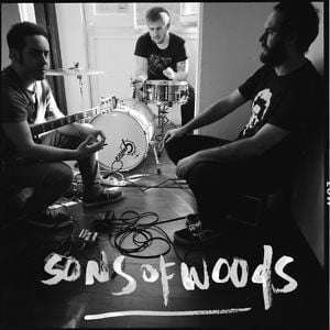 Profile picture for Sons Of Woods