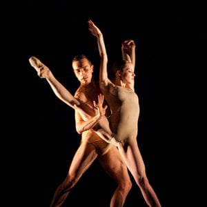 Profile picture for Company C Contemporary Ballet
