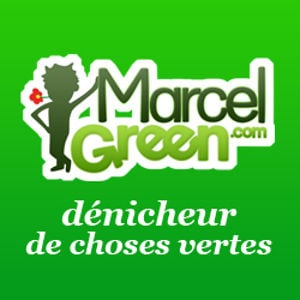 Profile picture for Marcel Green