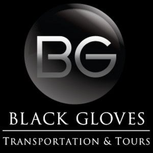Profile picture for Black Gloves