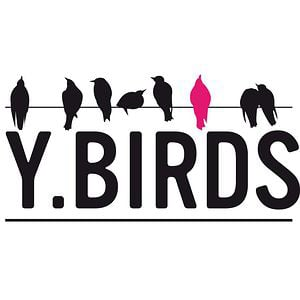 Profile picture for Y Birds