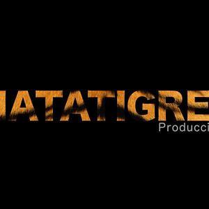 Profile picture for MATATIGRES