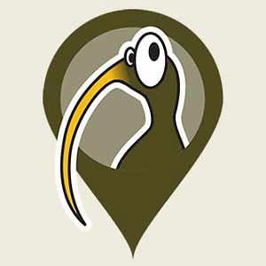 Profile picture for Flightless Kiwis
