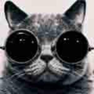 Profile picture for Xavixx