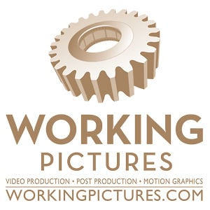 Profile picture for Working Pictures
