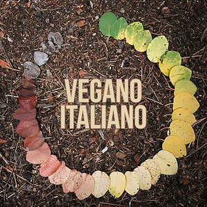 Profile picture for vegano italiano