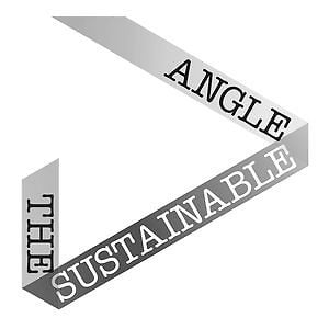 Profile picture for The Sustainable Angle