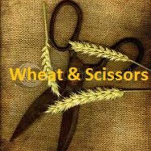 Profile picture for Wheat & Scissors