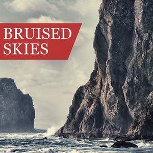Profile picture for Bruised Skies