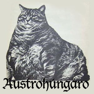 Profile picture for Austrohúngaro