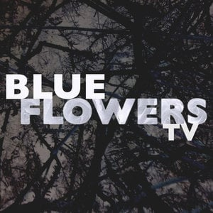 Profile picture for Blue Flowers TV