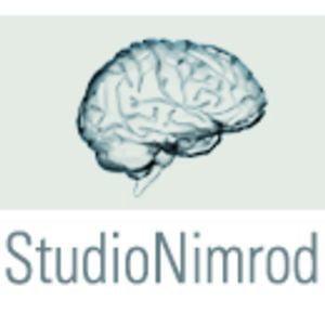 Profile picture for StudioNimrod