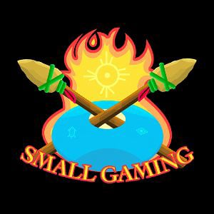Profile picture for Small Gaming