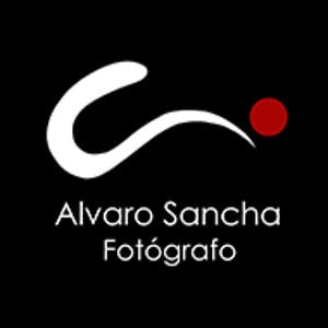 Profile picture for Alvaro Sancha