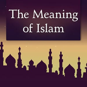 Profile picture for The Meaning of Islam