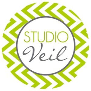 Profile picture for Studio Veil