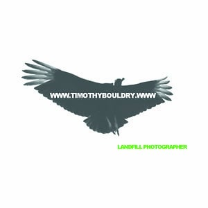 Profile picture for Timothy Bouldry