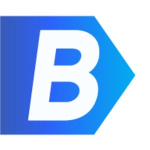 Profile picture for The B Team