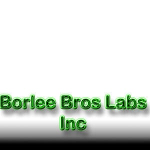 Profile picture for BorleeBrothers LabsInc