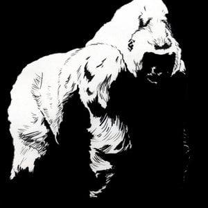 Profile picture for Decker Grey