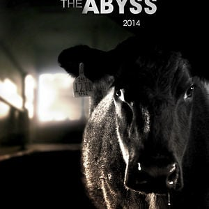 Profile picture for Voices from the Abyss