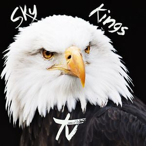 Profile picture for SkyKingsTV