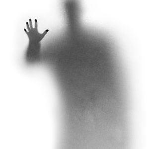 Profile picture for Shiran Granot