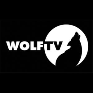 Profile picture for Wolf TV