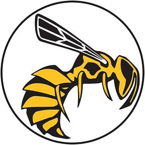 Profile picture for Yellow Jacket
