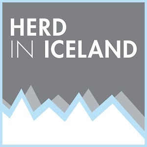 Profile picture for Herd In Iceland