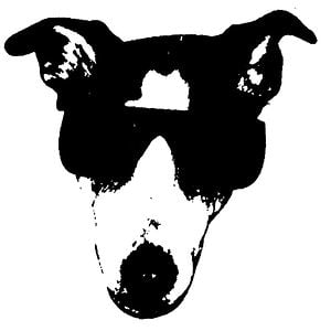 Profile picture for Dirty Dog