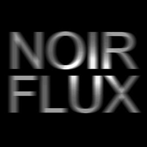 Profile picture for NoirFlux