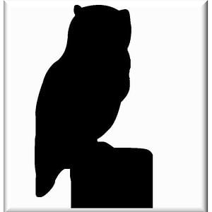 Profile picture for Nocturnus Libertus