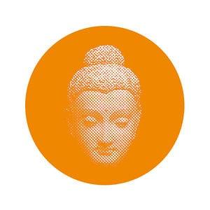 Profile picture for Dharmayoga escuela de yoga